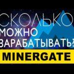 MinerGate: сколько можно заработать?